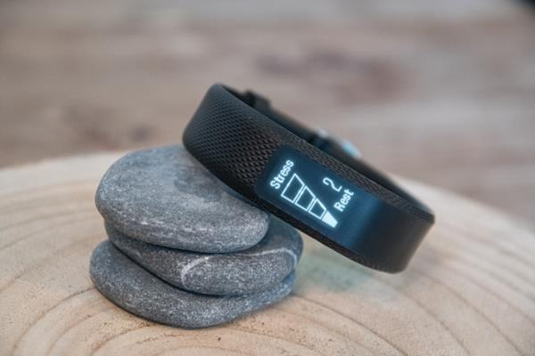 Display Garmin Vivosmart 3