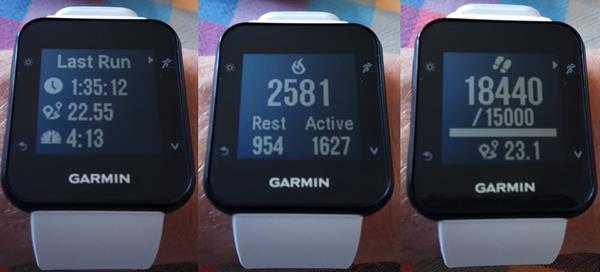 Notifiche Garmin Forerunner 35